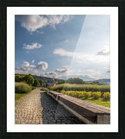 AZY_5231 Picture Frame print