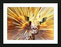 Giraffe pop 7  Picture Frame print