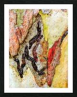 Aussie Gum Tree Bark - 9 Picture Frame print