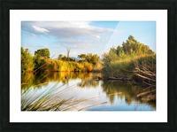 Serene River Picture Frame print