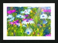 Joyful Daisy Field Picture Frame print