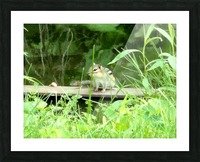 20190916_180230 Picture Frame print