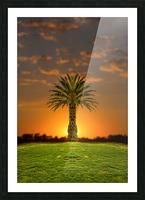 Phoenix Rising Picture Frame print