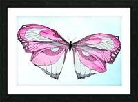 Papillon Picture Frame print