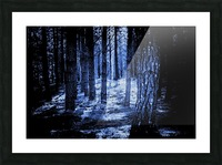 Mysterious Forest Picture Frame print
