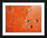 Seeds of the Desert Picture Frame print