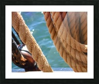 Learning the Ropes Picture Frame print