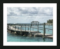 Dolphin Cove Picture Frame print