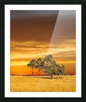 FireGold Picture Frame print