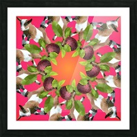 APPLE PICKIN - Picture Frame print