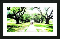 Trees Picture Frame print