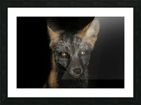 LRM_EXPORT_24316299465035_20191009_150349392 Picture Frame print