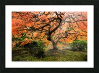 autumn bliss Picture Frame print