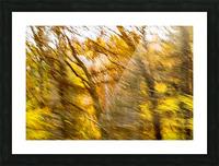 Foliage Blur Picture Frame print