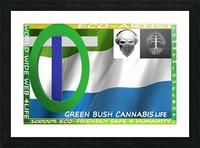 GREEN BUSH CANNABIS. LIFE Picture Frame print