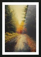 Autumnal Landscape 4 Picture Frame print