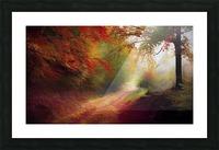 Autumnal Landscape 5 Picture Frame print