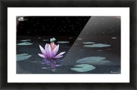 The Little Frog Picture Frame print