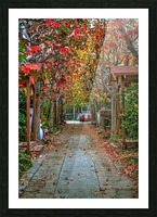 Fall in the city Picture Frame print