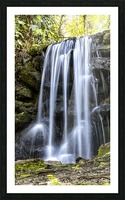 Rainbow Springs Falls Picture Frame print