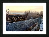 On The Fence Picture Frame print
