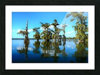 Reflect Much Picture Frame print