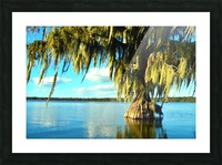 Blue Sky Green Leaves Picture Frame print