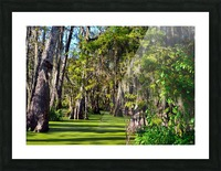 Travel My Path Picture Frame print