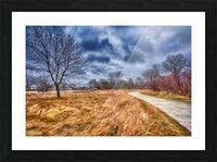 Templar Path Picture Frame print