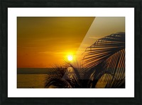 Sunrise at the palm tips Picture Frame print