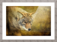 The Hunt Picture Frame print