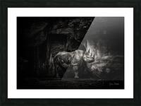 Rhino in Black & White Picture Frame print