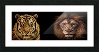The Kings of Beasts - No Title Picture Frame print