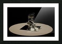 Crystalline Floret Picture Frame print