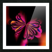 Fly_fly_fly_take_1 Picture Frame print