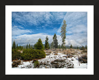 Willow Valley Oregon Picture Frame print