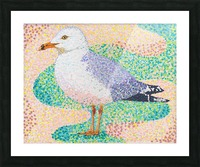 Seagull Picture Frame print
