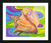 Seashell Picture Frame print