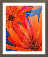 Orange Flowers  Picture Frame print