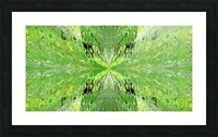 Butterfly in Crystal 70 Picture Frame print