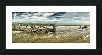 Driftwood Beach Panorama 103 Blackgold Picture Frame print