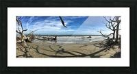 Driftwood Beach Panorama Shadows Picture Frame print