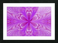 Red Pink Star Flower Picture Frame print