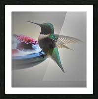 Colibris Impression et Cadre photo