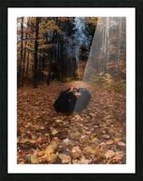 Tapis de feuille Impression et Cadre photo