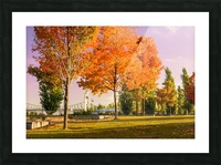 Autumn In The Old Port Of Montreal Picture Frame print