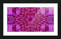 Wildflower in Pink Bloom Picture Frame print