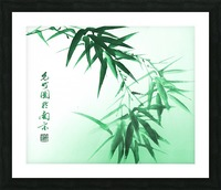 Green Bamboo Twig Picture Frame print