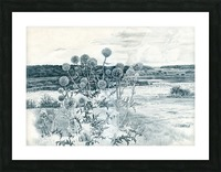 Scotch_Thistle Picture Frame print