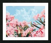Blush Blossom II Picture Frame print